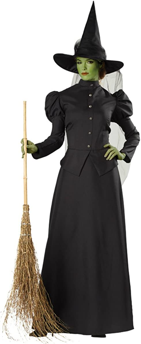 Halloween Female Witch Deluxe Fancy Dress Up Outfit Costume One Size Adult NEW