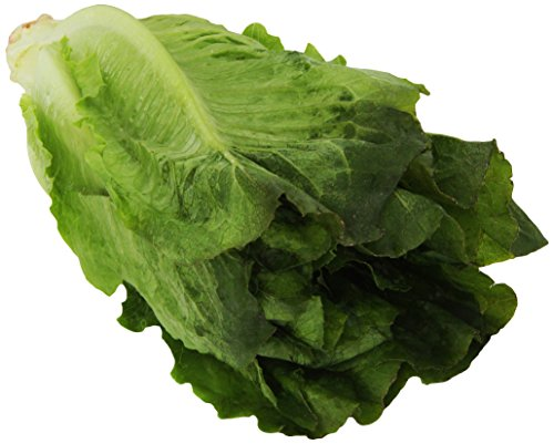 Organic Romaine Lettuce, 1 Head