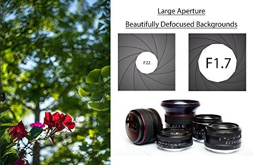 51YxHZuKkSL - Sony SEL35F18 35mm f/1.8 Prime Fixed Lens