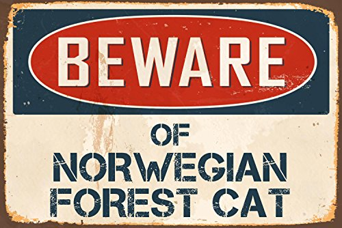 StickerPirate Beware Of Norwegian Forest Cat 8 x 12 Vintage Aluminum Retro Metal Sign VS472