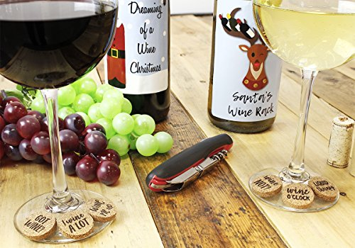 Review Wine Glass Charms –