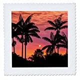 3dRose Danita Delimont - Sunsets - Silhouetted palm trees at sunset, Kona Coast, The Big Island, Hawaii - 18x18 inch quilt square (qs_259238_7)