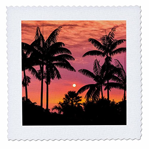 3dRose Danita Delimont - Sunsets - Silhouetted palm trees at sunset, Kona Coast, The Big Island, Hawaii - 18x18 inch quilt square (qs_259238_7) by 3dRose