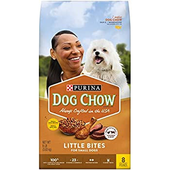 Purina One Dog Chow Review