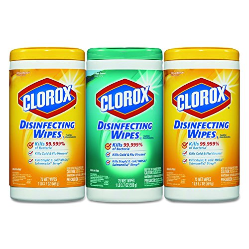Amazon.com: Clorox Disinfecting Wipes Value Pack, Citrus Blend and Fresh Scent, 225 Wet Wipes (Pack of 4): Kitchen & Dining