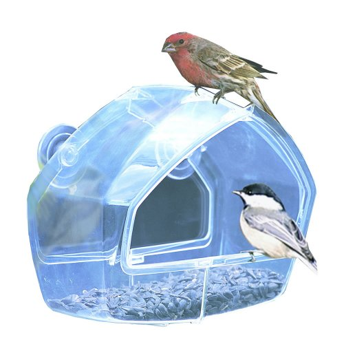 Birdscapes Clear Window Feeder 348 (Window Feeder Clear Bird)