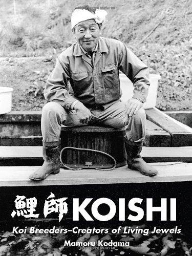 KOISHI | Koi Breeders-Creators of Living (Koi Breeder)