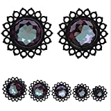 Funnmart 2PCS Stainless Steel Ear Gauge Flesh Nature Srone Ear Tunnel Plug Expansion Body Piercing Jewelry