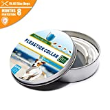 Flea Collar - Flea and Tick Prevention for Dogs One Size Fits ALL - Flea Control 8 Months Protection & Treatment Hypoallergenic Tick Collar Insect Repellent Collar with Natural Plant Extracts