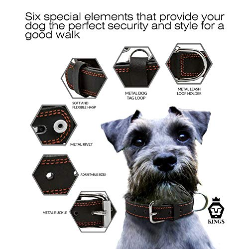 Leather-Dog-Collar-Neck-10-23-Adjustable-Dog-Collar-Puppy-Collar-Black-Heavy-Duty-Pet-Collars-Thick-Strong-Collars-for-Dogs-Great-Dog-Supplies-and-Accessories