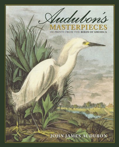 Audubon's Masterpieces: 150 Prints from the Birds of America by JG Press
