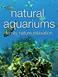 Natural Aquariums Family Nature Relaxation