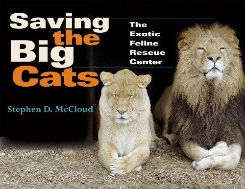 Download Saving the Big Cats: The Exotic Feline Rescue Center (Quarry Books) PDF