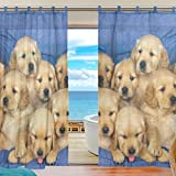 Cheap INGBAGS Bedroom Decor Living Room Decorations Dog Pattern Print Tulle Polyester Door Window Gauze / Sheer Curtain Drape Two Panels Set 55×78 inch ,Set of 2