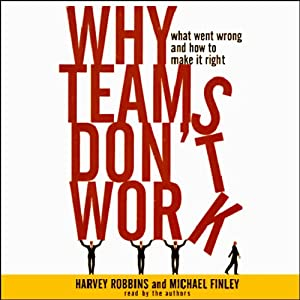 Why Teams Don't Work Audiobook