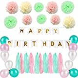 GLOGLOW Tassel Garland Tissue Paper Banner Paper Flower Balloons Happy Birthday Gold Letters Perfect Birthday Party Decorations Supplies