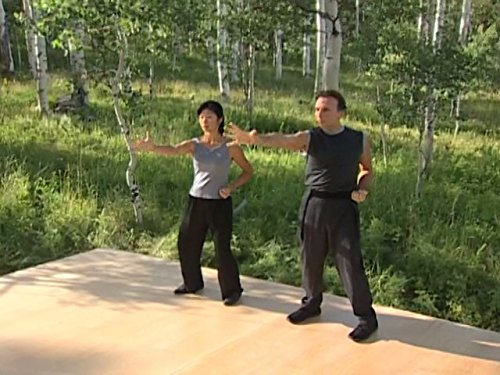Exercise Stress System (Qigong for Stress Relief)