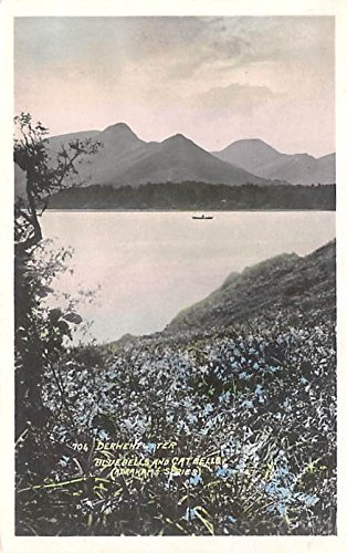Derwent Water, Bluebells and Catbells United Kingdom, Great Britain, England Postcard