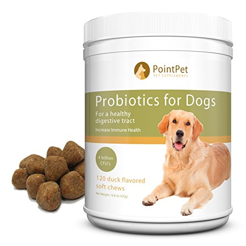 Complete Chewable Probiotics & Prebiotic for Dogs - Best Support for Dog's Digestive Health - Immune Booster - Diarrhea, Gas, Bad Breath, Allergy Relief. Yeast Infection & Upset Stomach Aid