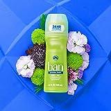 Ban Roll-On Antiperspirant Deodorant, Powder Fresh, 3.5oz