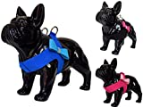 Lushpetz Bowtie Dog Harness for Small Dogs and XSmall Dogs in Pink Black or Blue Soft Vest Step in Style Suitable for Dogs, Cats, Kittens, Rabbits, Puppy, Bunnies