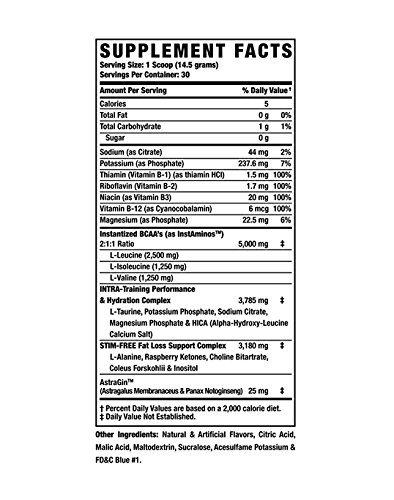 AMINO TONE Nutrition Mixer