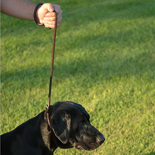 Avery Hunting Gear Leather Line Lead by Avery (Image #2)