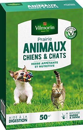 Vilmorin 4461212 Prairie Animaux Chiens Et Chats Vert 580 X 145 X 22 Cm