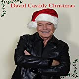 51YyoNlCW%2BL. SL160  - David Cassidy - Forever A Teen Heartthrob