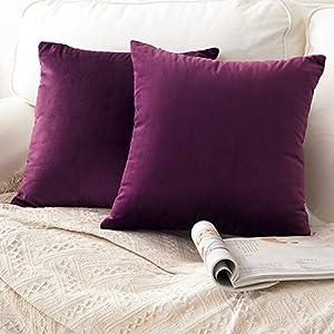 CCRoom Housses de Coussin, Pack 2 de décoratives taies d'oreiller pour canapé-lit velouté Doux pour Chambre à Coucher…