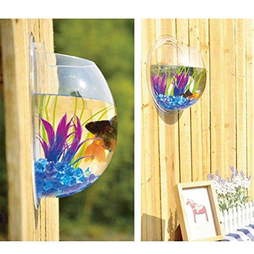 Sweetsea Creative Acrylic Hanging Wall Mount 1 Gallon Fish Tank Bowl Vase Aquarium Plant Pot Fish Bubble Aquarium Decor - Clear (Large)