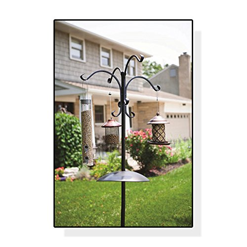 Panacea Birding Basics Deluxe 6-Ft Stand-Alone Bird Feeding Station with Squirrel Baffle - Holds 8 Feeders