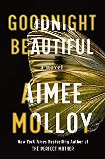 Book Cover: Goodnight Beautiful: A Novel