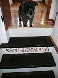 Amazon Com Set Of 12 Attachable Indoor Carpet Stair