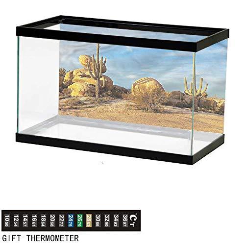 bybyhome Fish Tank Backdrop Cactus,Saguaros Boulders Sunset,Aquarium Background,48