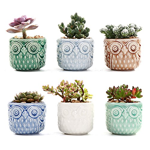 SUN-E 2.75 Inch Ceramic Owl Pattern Succulent Cactus Plant Pots Flower Pots Planters Containers Window Boxes Bonsai Pots Perfect For Candle Holder With Small Hole 6 Colors In Set ()
