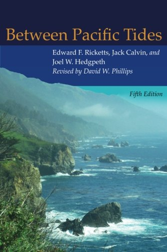 Between Pacific Tides: Fifth ()