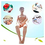 Demonstration Manikin Anatomical Human Model for Nursing Medical Training Teaching & Education Supplies, Female, Life Size