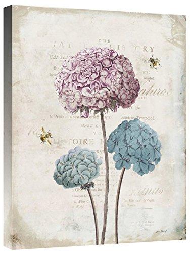 Global Gallery Katie Pertiet 'Geranium Study I Pink Flower