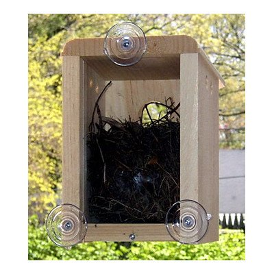 Bird Nesting Box (Coveside Birds - HousingWindow Nest Box)