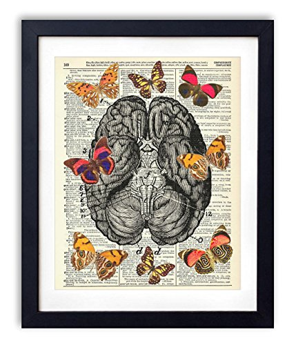 Butterflies On The Brain Upcycled Vintage Dictionary Art Print 8x10