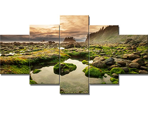 Green Paintings 5 Panel Canvas Wall Art Olympic National Park Pictures Wall Decor Landscapes Framed Home Decor for Living Room Giclee Modern Artwork Ready to Hang Posters and (Olympic National Park Pictures)