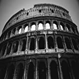 Designer Shower Curtain - Colosseum