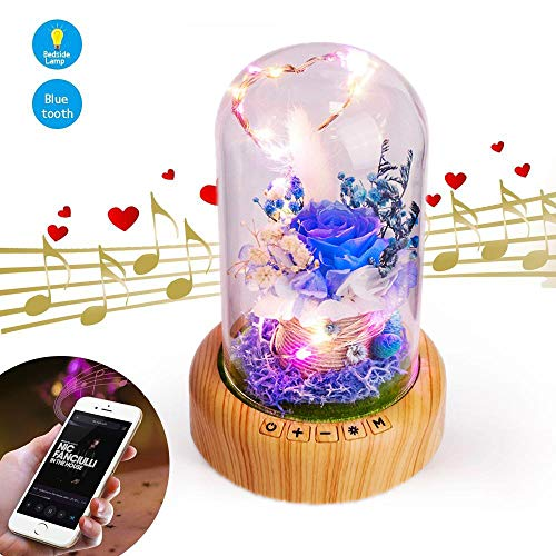 Moon Harbor Preserved Forever Rose Bedside Lamp Bluetooth Speaker, Unique Present for Her, Women Girlfriend on Valentine Day, Enchanted Flower LED Night Light Music Player in Glass Dome, Blue Rose