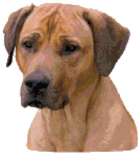Rhodesian Ridgeback Dog Portrait Counted Cross Stitch Pat...