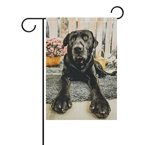 ALAZA Cute Portrait of Black Lab Dog Polyester Garden Flag House Banner 28 x 40 inch, Two Sided Welcome Yard Decoration Flag for Wedding Party Home (Black Lab Flag)