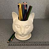 Handmade White Ceramic pot Succulent herb pot Clear Glazed New Cat Doll head ceramic planter on saucer with drain holes Toothbrush desktop pencil holder