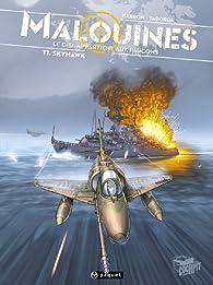 Malouines, Tome 1 : Skyhawk par Walter Javier Taborda