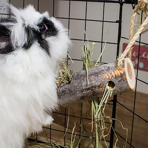 Small Pet Select All Natural Apple Wood Hay/Treat Feeder