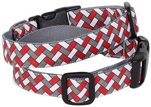 Molly Mutt East of Eden bambú perro collar, mediano